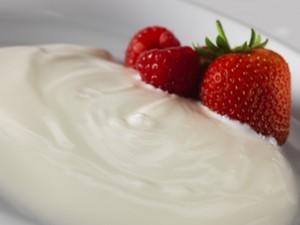 Yogurt Middledale Foods dairy suppliers